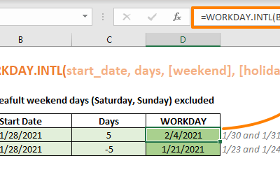 Function: WORKDAY.INTL