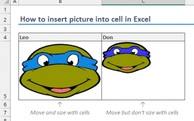 How to insert picture into cell in Excel